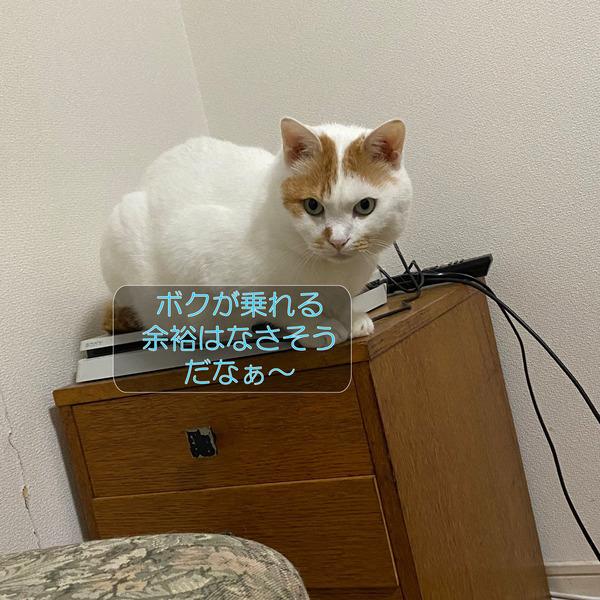 ニクス-メイ-ムーン3_210920_5