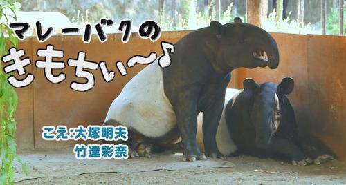 大塚明夫さんと竹達彩奈さんが濡れ場を演じてるwwwwwwww