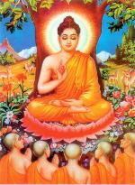 虫エ ぶろぐ : 仏陀◎マシーン