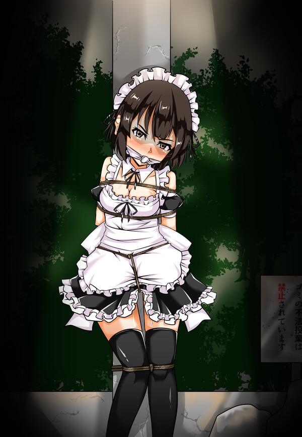 メイド エロ画像 (44)