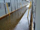 仮設の裏は池