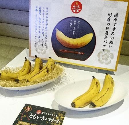 【朗報】皮ごと食べられるバナナが登場! 試行錯誤40年、5本で4千円超