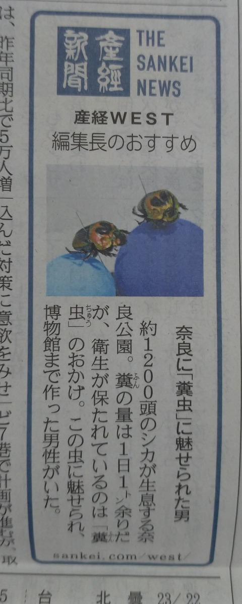 糞虫 夕刊 11月14日