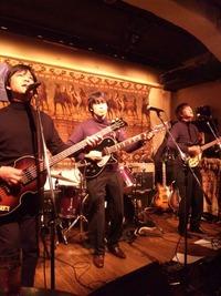 armadillo2011.3