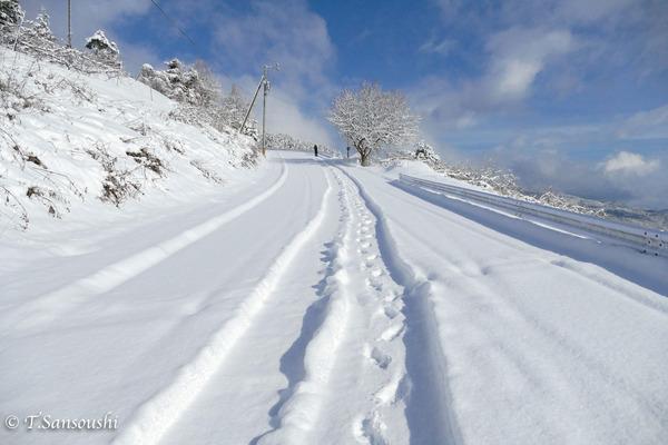 雪景色 (1 - 1)-2