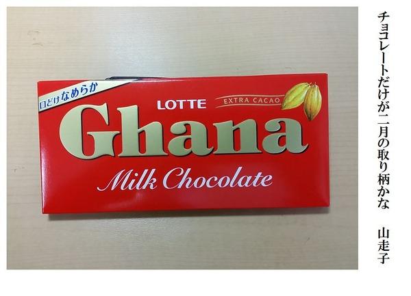 チョコレートだけが二月の取り柄かな