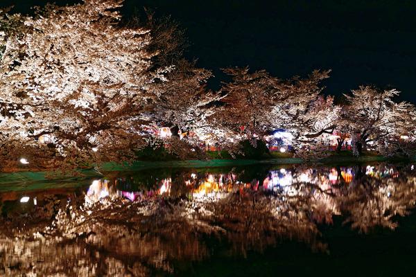 夜桜2 (1 - 1)