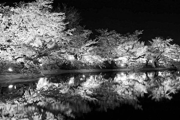 夜桜 (1 - 1)-3
