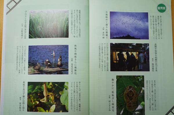 24 俳句界 (1 - 1)