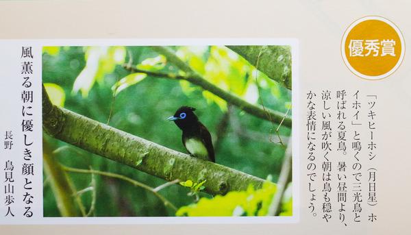 20118-06-25 俳句界7月号 (1 - 1)
