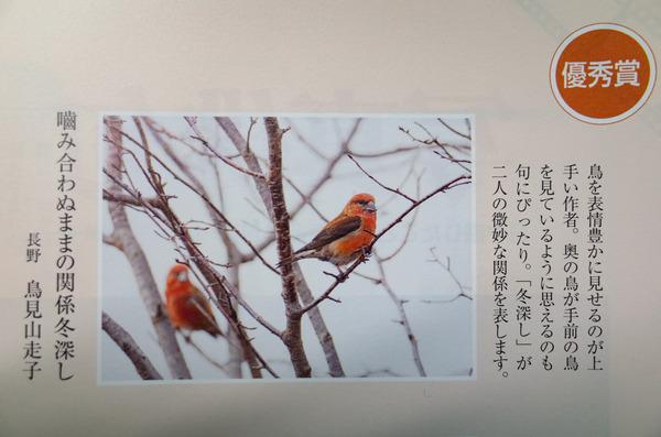 26 俳句界 (1 - 1)