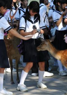 【画像】カメラに夢中の女子中学生がHなイタズラされてる衝撃写真・・・(※画像あり)