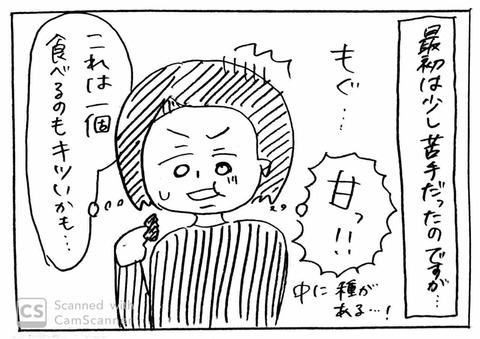 IMG_3206