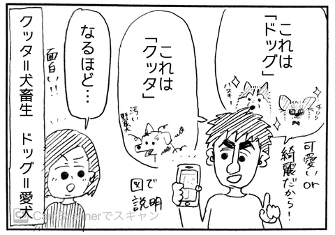 IMG_6416