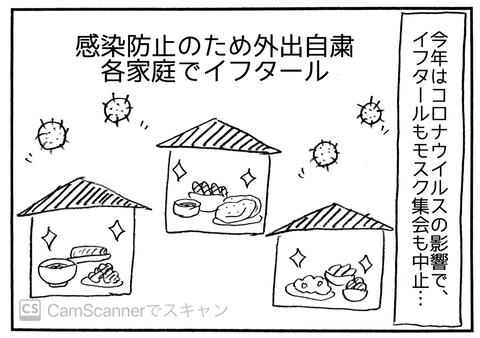 IMG_6082