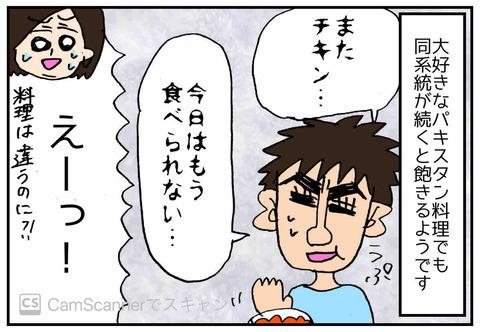 IMG_3133