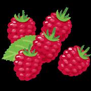 fruit_raspberry_heta