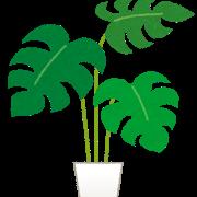 イラストや 観葉植物1