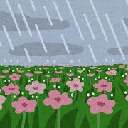 bg_rain_natural_flower