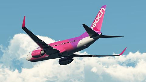 格安,航空業界