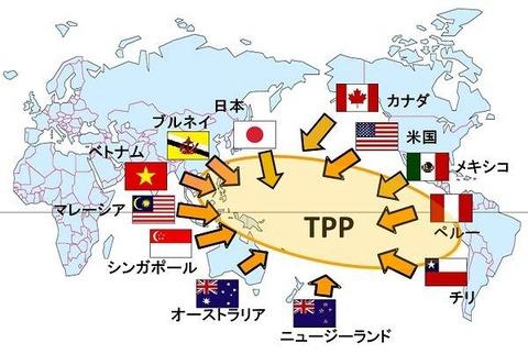 TPPとは,メリット,中身,解説