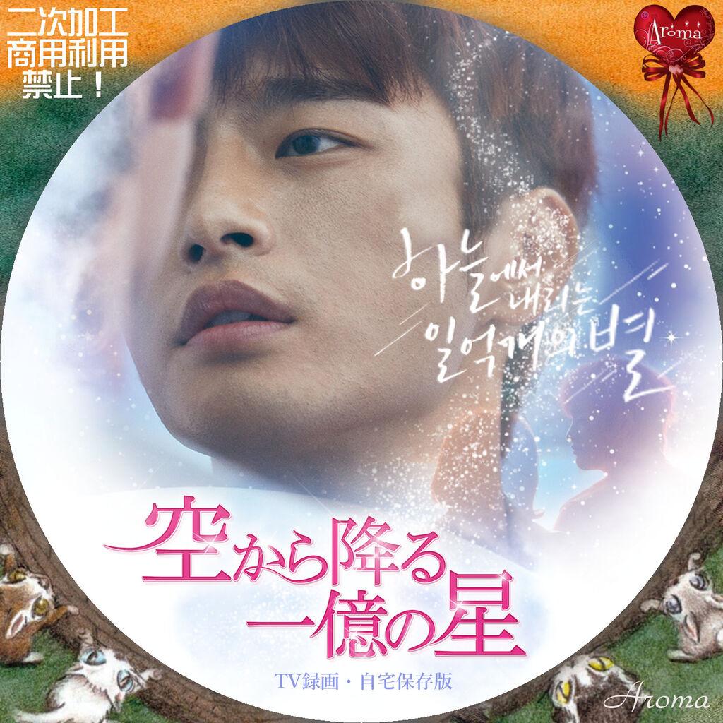 韓国ドラマ 空から降る一億の星 <レーベル & ジャケット> : Aroma cafe ...