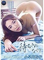待ちきれなくて 〜押さえられない淫靡な欲情 小早川怜子〜