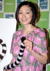 新番組『ワオキツネザル 今日も大騒ぎ』の記者発表会での渡辺満里奈