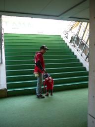 トルシエ階段