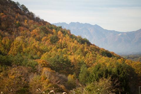 ノコギリ岳IMG_3211