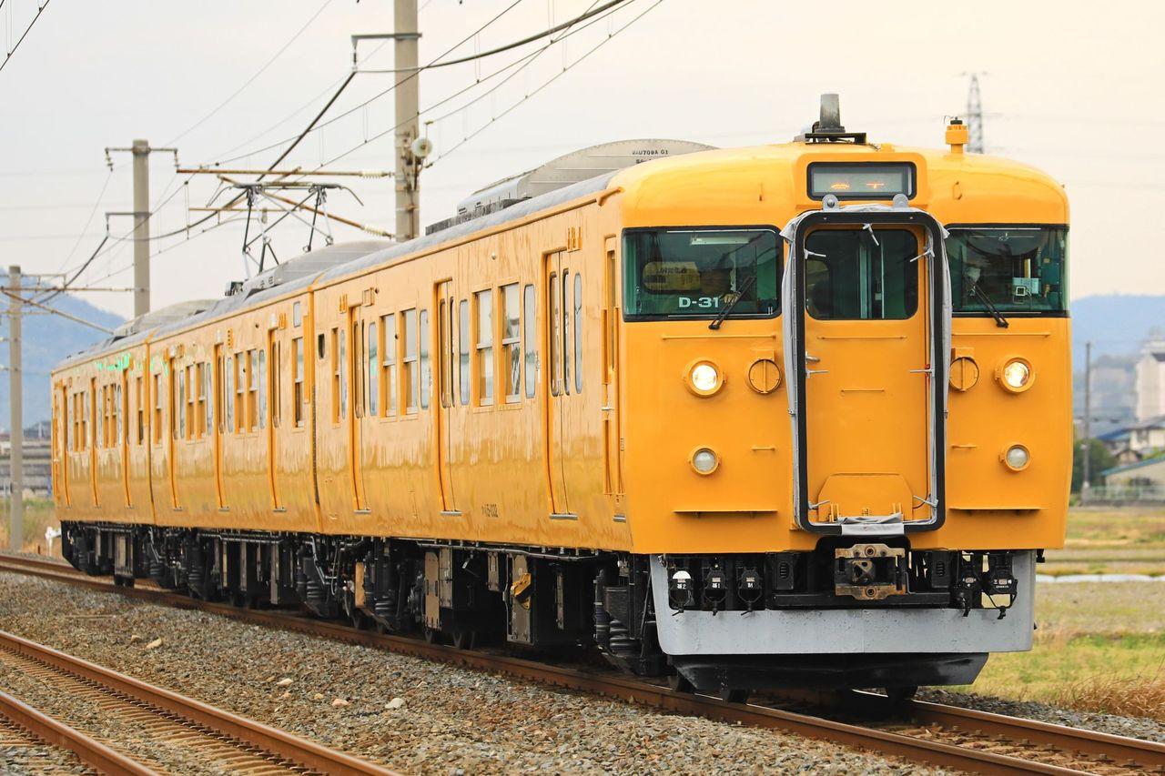 JR西日本 115系D31編成 地域統一色