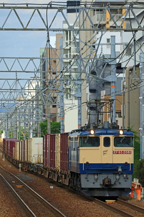 JR貨物 EF65-2081号機 国鉄特急色