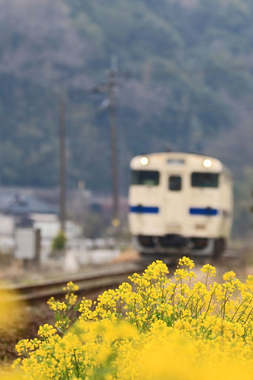 JR九州 キハ40-8103
