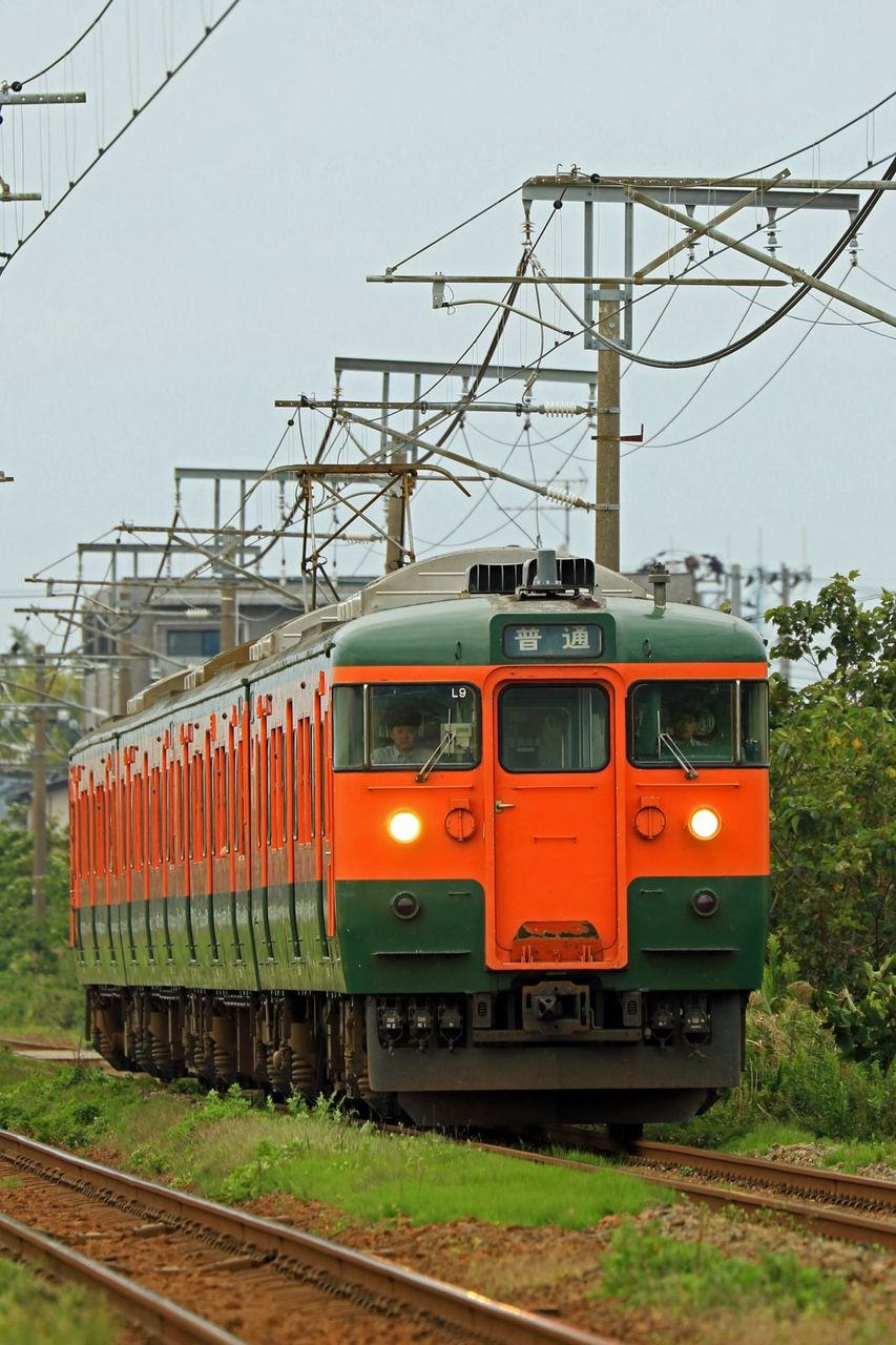 JR東日本 115系L9編成 湘南色