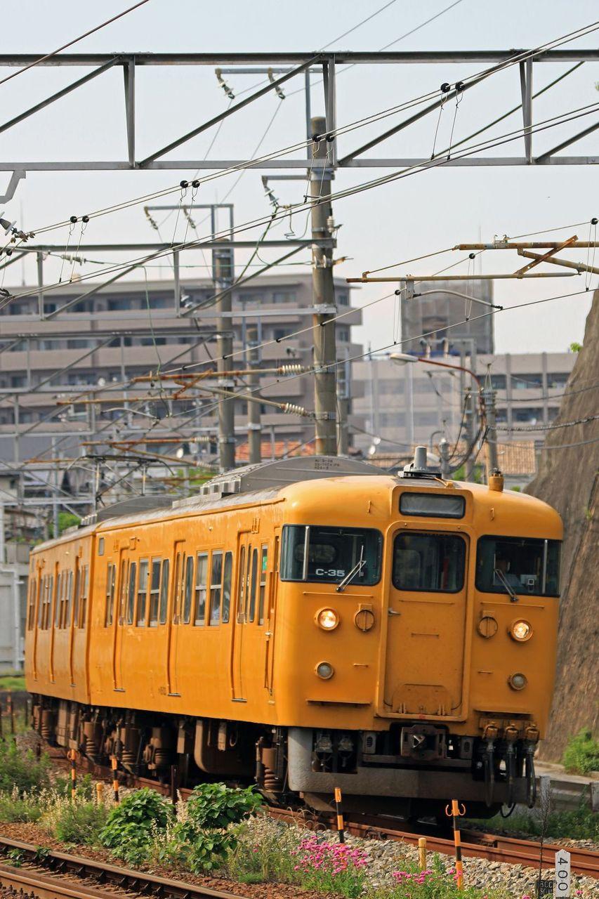 JR西日本 115系300番台C35編成 地域色