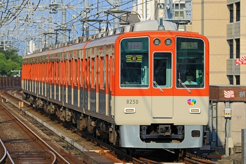 阪神電気鉄道 8000系8249F「阪神タイガース」副標掲出編成