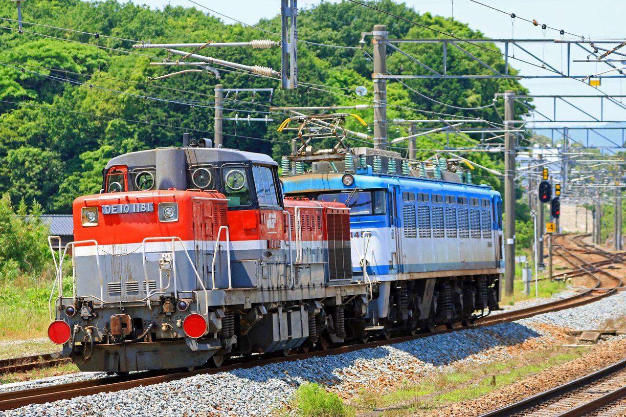 JR貨物 EF81-455号機+DE10-1181号機 貨物更新色