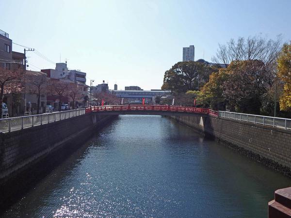 megurogawa20150326_01