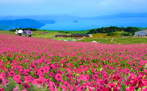 img-tourism-around-hakodateyama-01