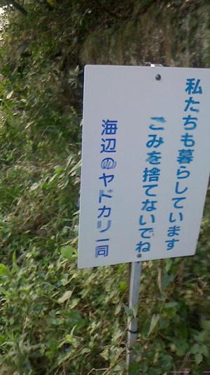 NEC_3384