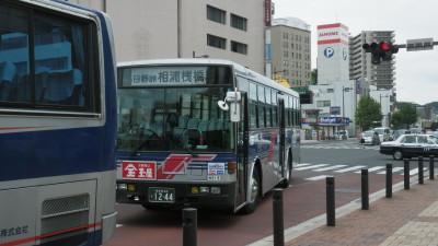IMGP0081