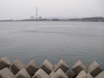 川内川河口