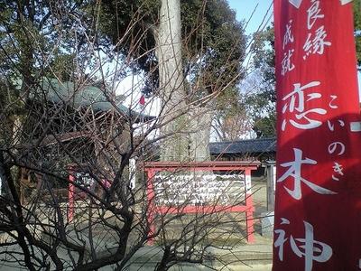 恋木神社_19