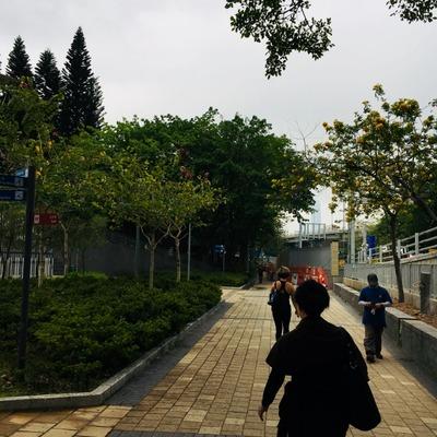 20180424 hongkong (23) (640x640)