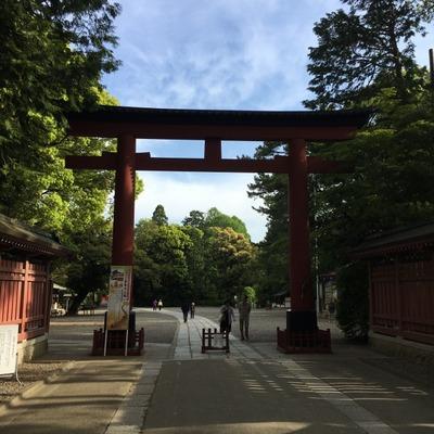 20170504_omiya (9) (640x640)