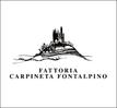carpinetafontalpino
