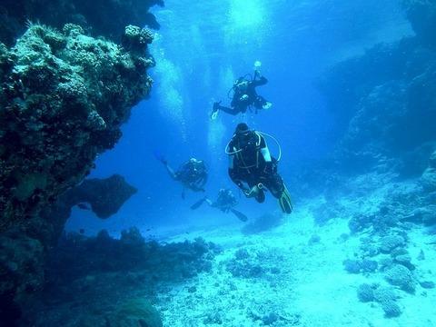 diving-813028__480