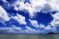 WTV in hawaii