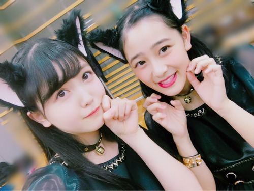 【乃木坂46】超絶可愛い!久保史緒里×向井葉月の黒猫2ショット!!