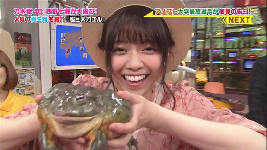 【乃木坂46】西野七瀬と与田祐希の共通点・・・
